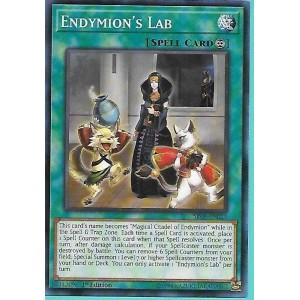 SR08-EN023 Endymion's Lab – Common